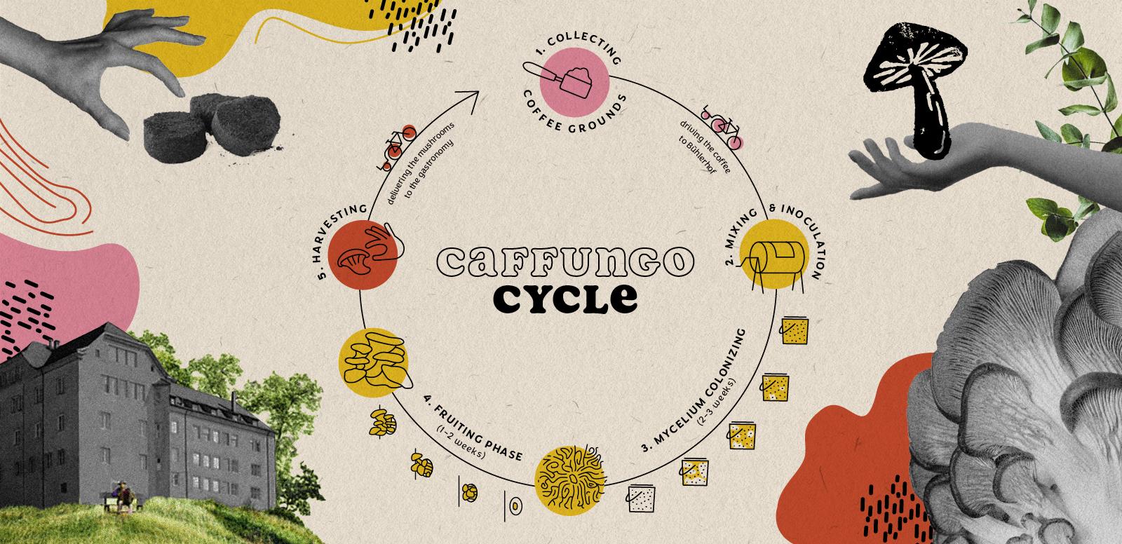 Caffungo-cycle